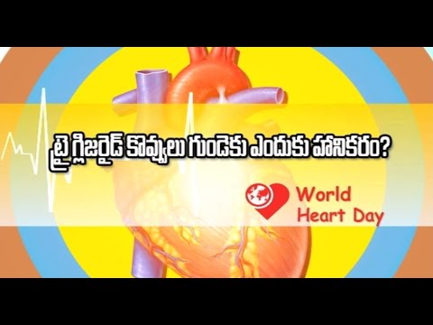 Why Triglyceride Cholesterol is not good for heart? by best cardiology doctor